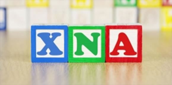 XNA enzymes