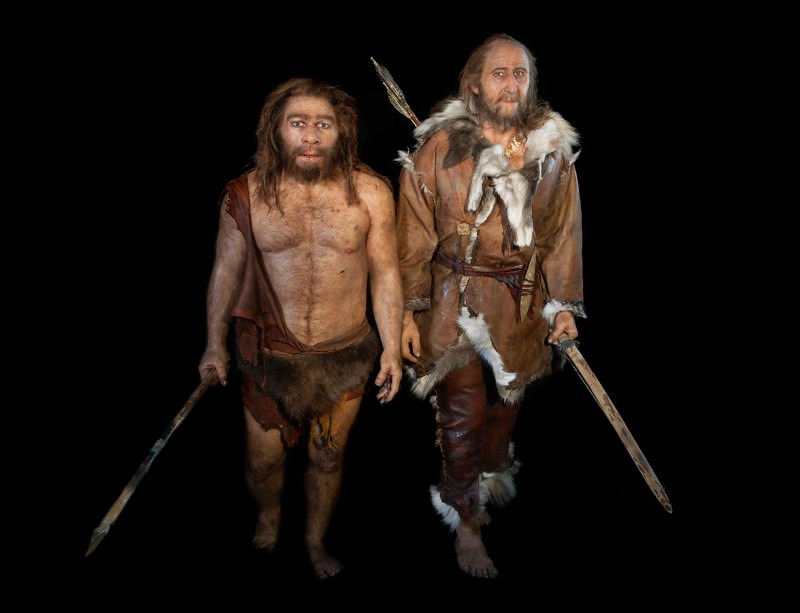 Modern human and Neanderthal. Photo credits: S.PLAILLY/E.DAYNES/SCIENCE PHOTO LIBRARY