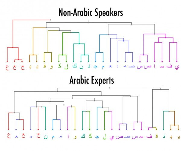 This chart groups letters based on how similar they looked to test participants who didn't know Arabic and to test participants who were experts in the language. Johns Hopkins researchers found the two groups saw the letters quite differently. Credit: Robert W. Wiley/JHU