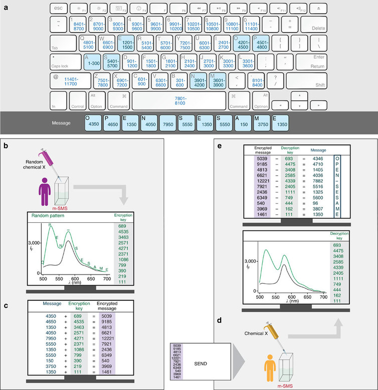 Coding and decoding the message. Photo credits: Margulies et al. Nature Communications