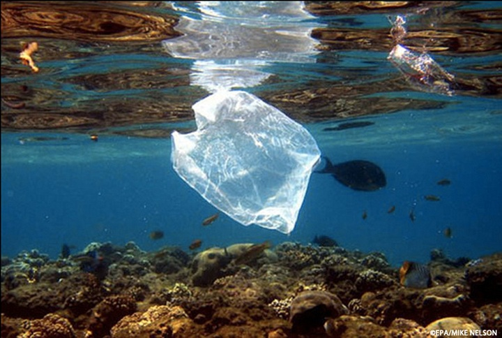 plastic-bag-ocean